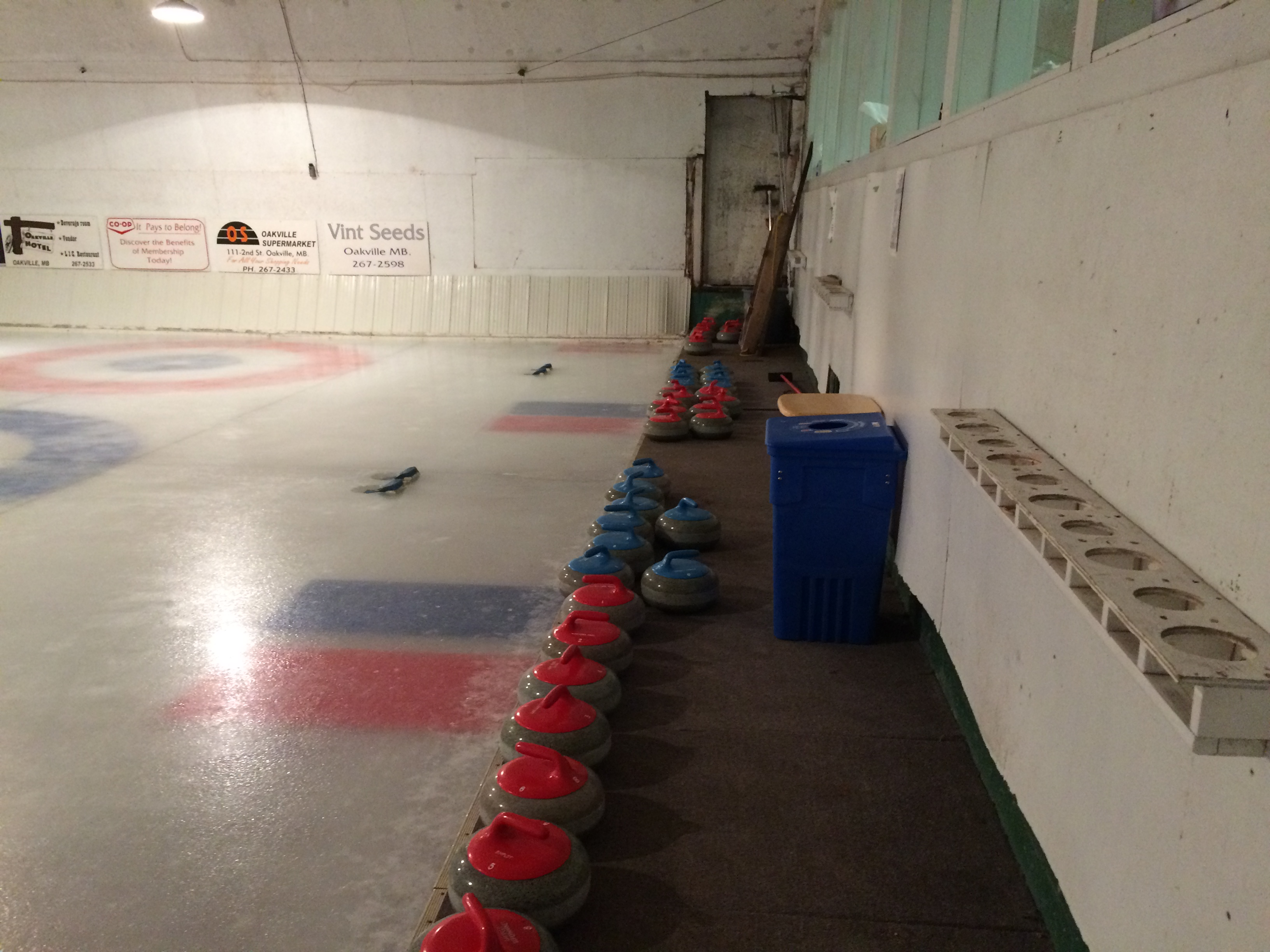 Curling rocks lined up at the rink